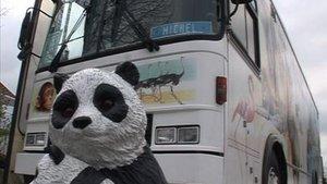 «Ça chauffe pour l'ours polaire !»