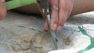 Valorisation du patrimoine paléontologique
