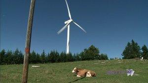 Seize éoliennes, un millième de l'électricité du pays