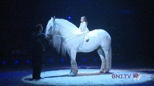 Cirque Knie: Huitième génération en piste