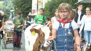 Carton plein pour la parade agricole